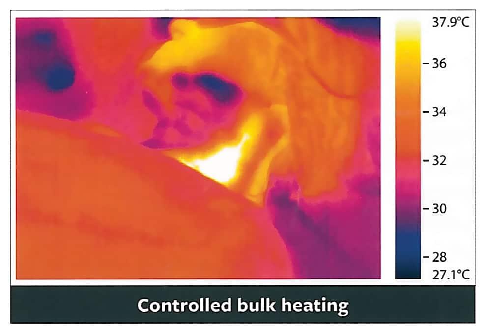 Controlled bulk heating
